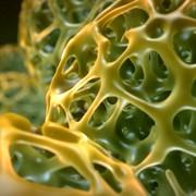 Voronoi-Spheres