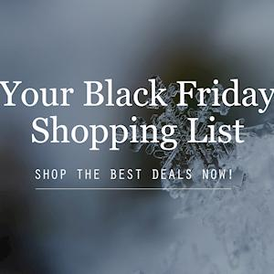 2017 Black Friday Shopping List