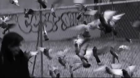 THE DECLASSIFIED: Trailer / Sizzle Reel