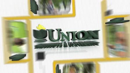 Union State University tv commercial