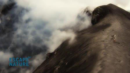 Trailer - Escape to Papua New Guinea