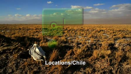 Locations CHile