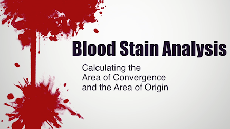 Blood Stain Analysis - Calculating the Area of Convergence