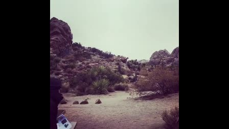 ON LOCATION - JOSHUA TREE