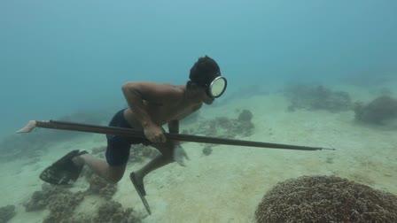 Underwater and Aerial demo reel