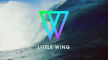 Color Reel - Little Wing Color