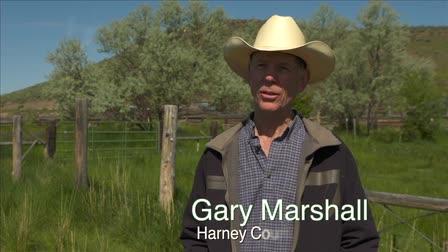 Harney Basin -Public