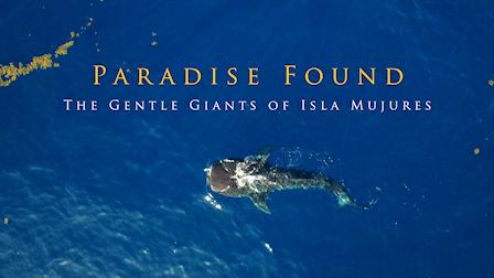 Paradise Found: Gentle Giants of Isla Mujures