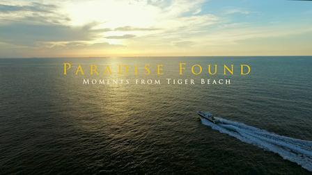 Paradise Found: Moments from Tiger Beach