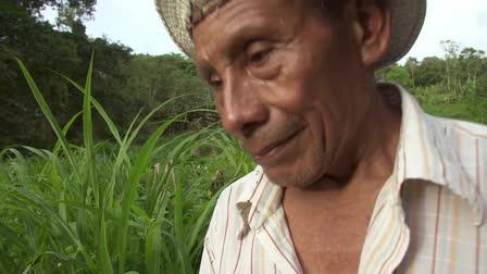 Documentary cinematographer Reel