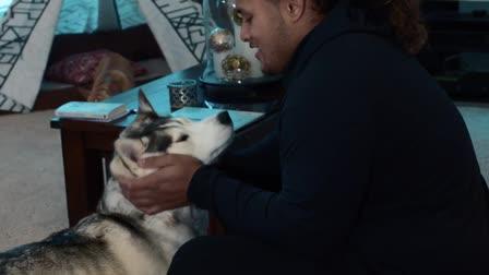 Pet Plan - Pet Parent 2018