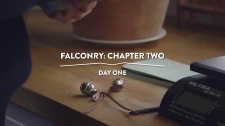 Falconry: A Six Part Series