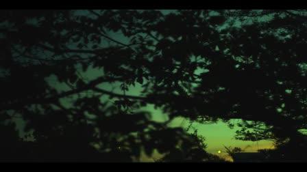 David Gordon's Cinematography Reel