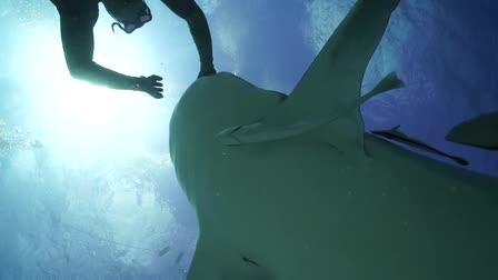 A little underwater footage