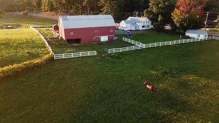 Drone Reel 2018