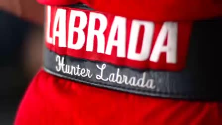 Labrada Motivation