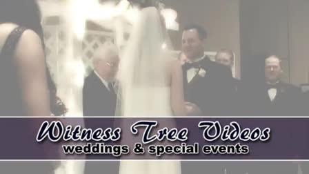 Witness Tree Videos - weddings demo