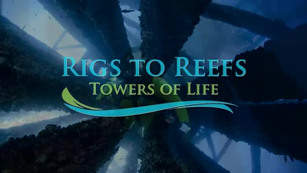 Rigs to Reefs