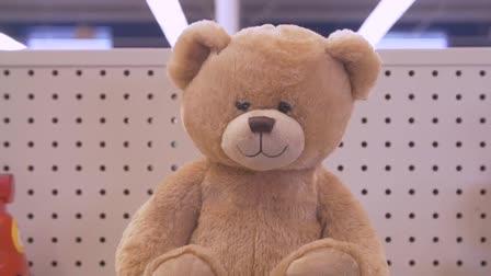 "Goodwill of Michiana, Inc ""Teddy Bear"""