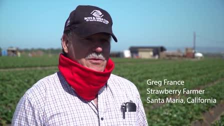 California Strawberry Commission COVID PSA (Camera Operator)