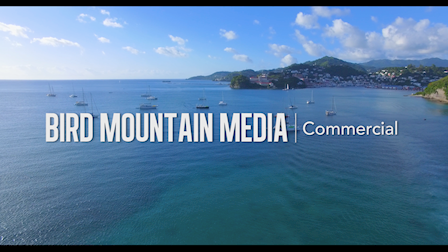 Bird Mountain Media | A Full Service Production Company | Demo Reel