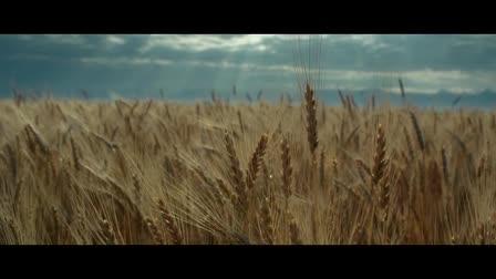 Land O Lakes - The Farmer