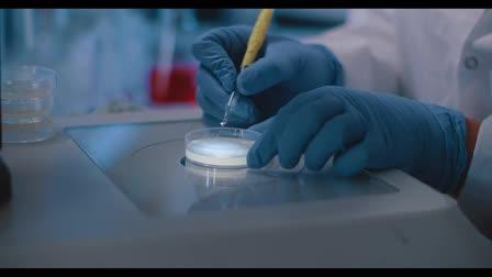 Immunotec DNA Video