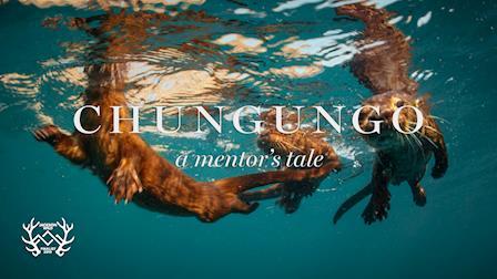 Chungungo: A Mentor's Tale