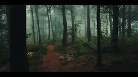 In the woods Model Promotional Video