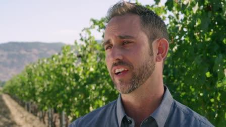 A Distinct Expression of Terroir - Beaulieu Vineyard Ranch Two