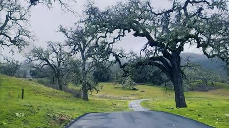Carmel Oaks, Carmel, CA (Mr. Location Scout)