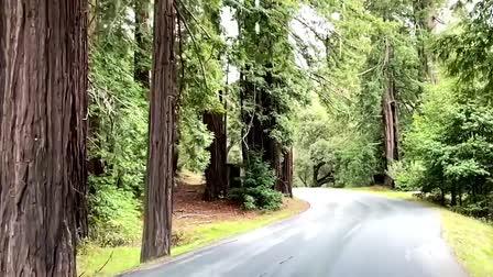 Carmel Valley - Film Location (Mr. Location Scout)