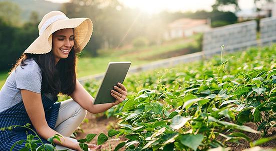 Entérese de todo sobre el crédito pyme agro de fomento