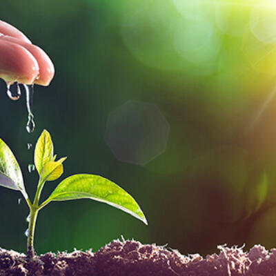 El Futuro Del Desarrollo Sostenible Empresarial