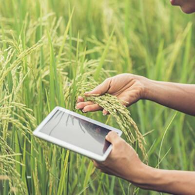 Agrotech Thumbnail