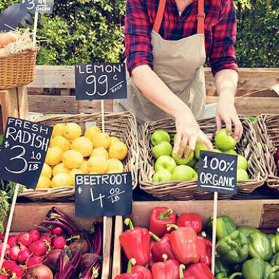 Panorama de la agricultura orgánica