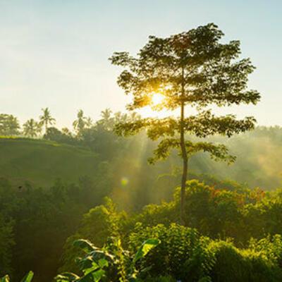 Turismo Sostenible Colombia