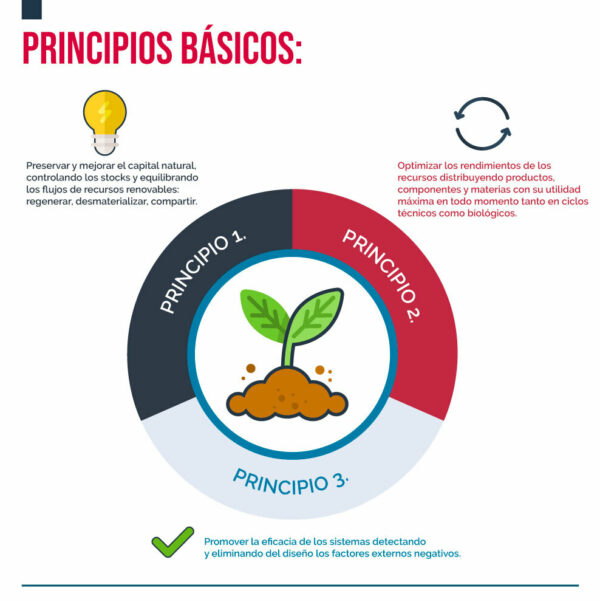 Infografía sobre los principios de la economía circular
