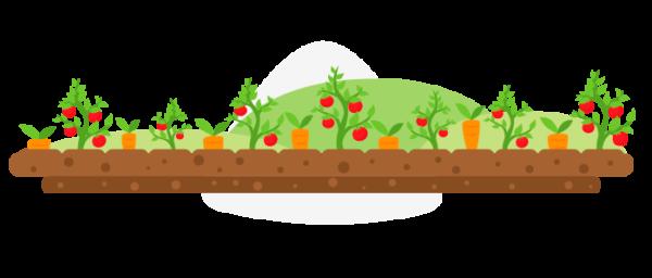 Tipos de agricultura orgánica en Colombia