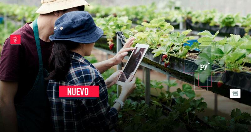 'Campo a un clic', la plataforma agro que llegó para empezar a saldar la deuda con el agro