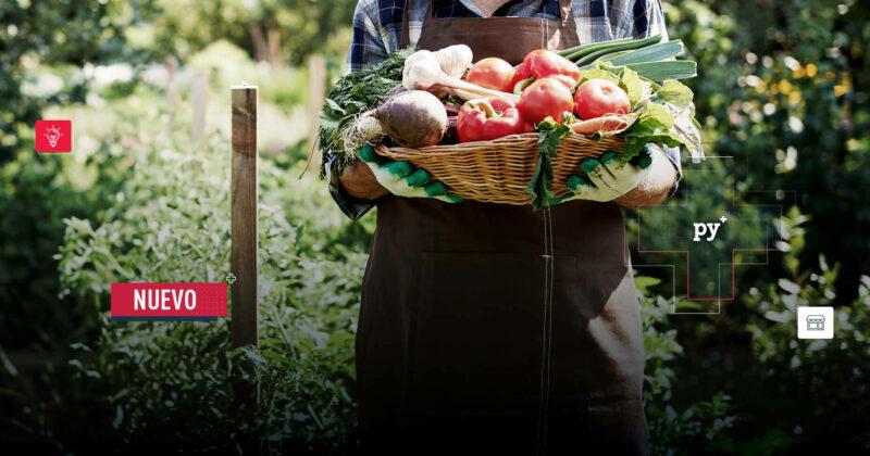 ¿Cómo va la recuperación del sector agropecuario después del paro?