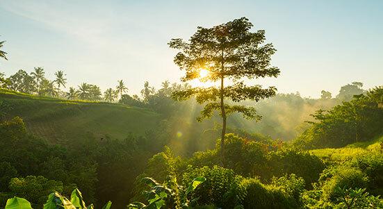 ¿Por qué el ecoturismo se ha vuelto tan atractivo en colombia?