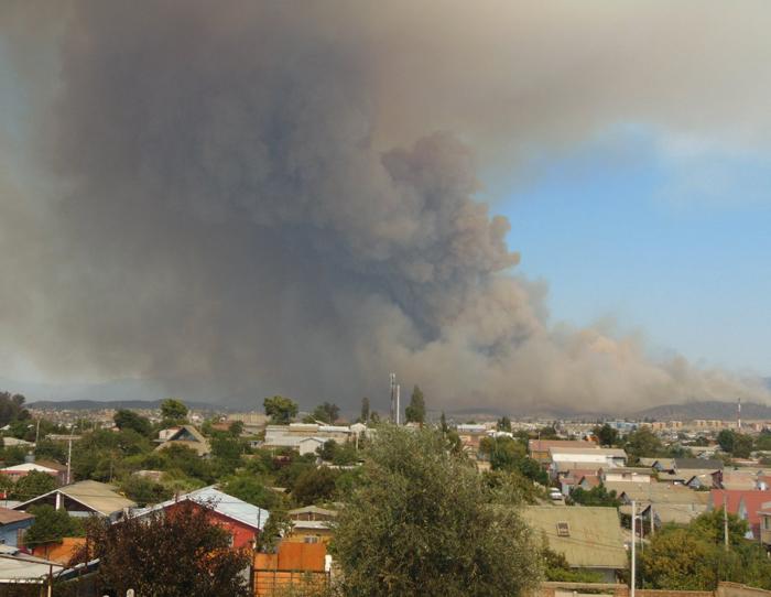 Alerta roja por incendios forestales en Viña del Mar