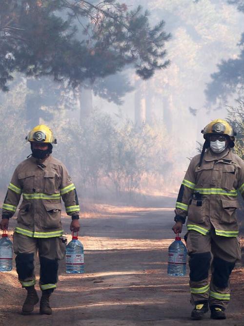 Declaran alerta roja en Villa Alemana por incendio forestal