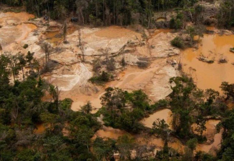 Amazonas-el-negocio-de-este-mundo