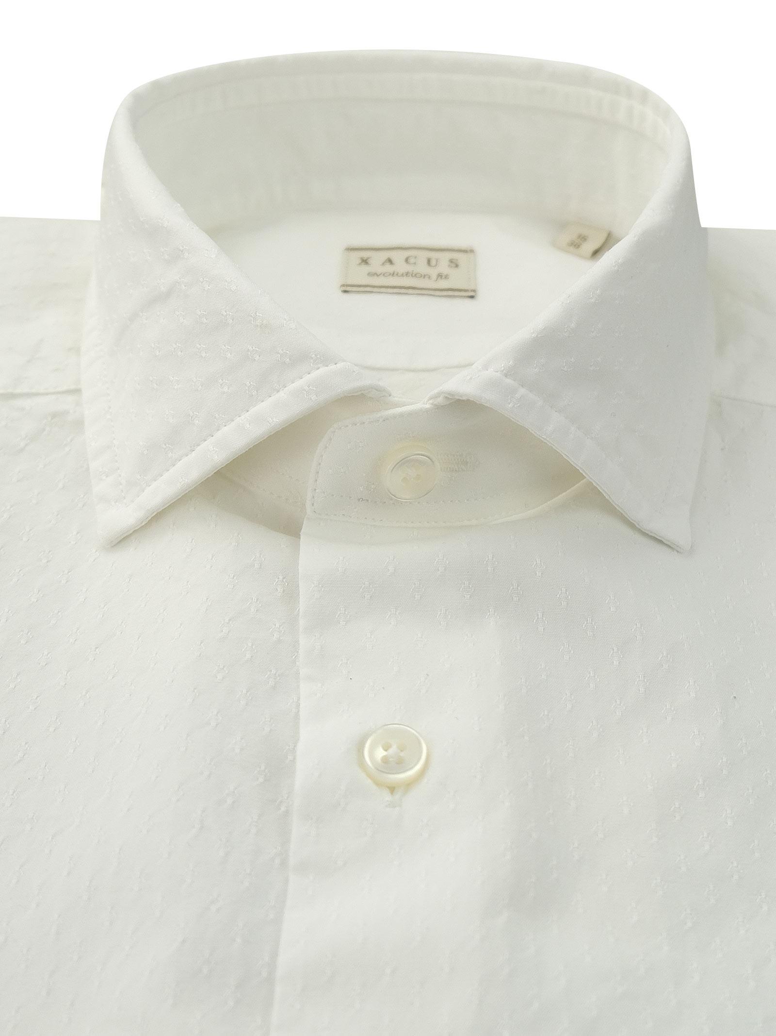 Camicia in cotone tinta unita XACUS   Camicie   848 81416001