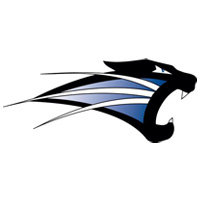 University of Saint Francis (IN) - Volleyball