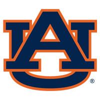 Auburn Gymnastics Camps