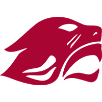 Concordia, Chicago - Women's Lacrosse