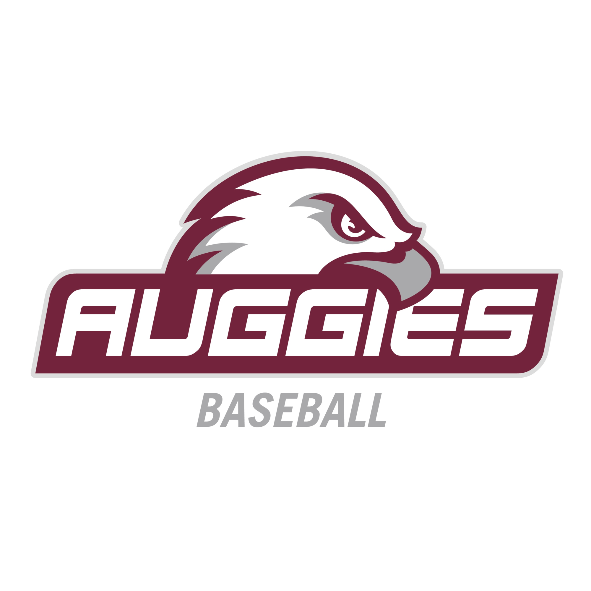 Augsburg University - Baseball